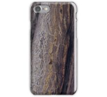 Nature's paths iPhone Case/Skin