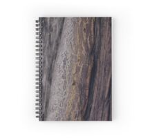 Nature's paths Spiral Notebook