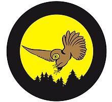 Hunt night owl bird by Motiv-Lady