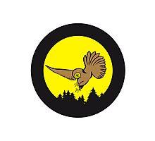 Hunt night owl bird Photographic Print
