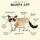Anatomy of a Grumpy Cat by Sophie Corrigan
