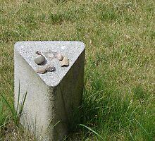 Nameless Star - fort Terezín (National Suffering Memorial)  by Natas