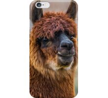 Alpaca Close-up on Utah Farm iPhone Case/Skin