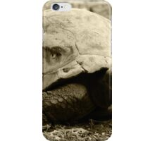 Giant Tortoise iPhone Case/Skin