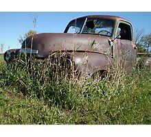 Rust and Grass Photographic Print