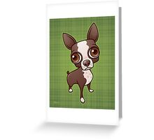 Zippy the Boston Terrier Greeting Card