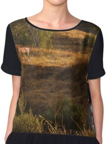 Who let the horse out? II Chiffon Top