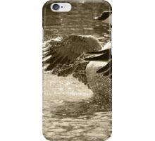 Canada Goose Splashing in Water iPhone Case/Skin