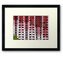 White To Rose To Red Framed Print