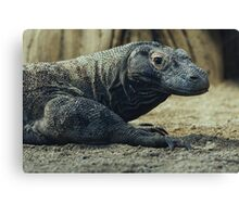 Komodo Dragon Portrait Canvas Print