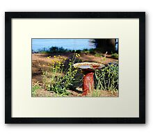 Tranquility by the Lake Framed Print