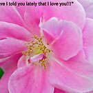 """""""Have I told you lately that I love you"""" by Carolyn Clark"""
