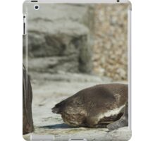 The 2 positions of the Penguin iPad Case/Skin