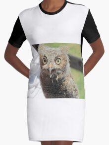 Baby screech owl Graphic T-Shirt Dress
