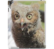 Baby screech owl iPad Case/Skin