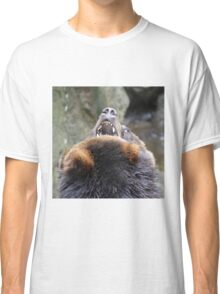 Grizzlis fighting Classic T-Shirt