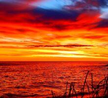 Red Sea at Dawn Sticker