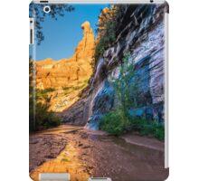 Coyote Gulch Sunrise - Utah iPad Case/Skin
