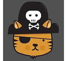 Pirate Cat - Jumpy Icon Series Photographic Print