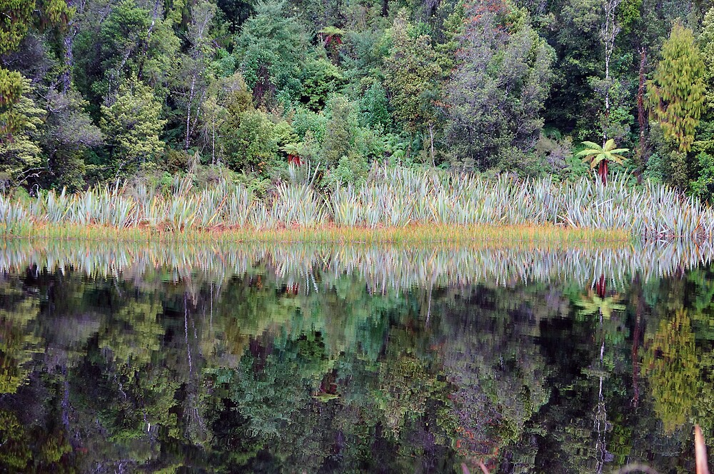 Mirrored by Harry Oldmeadow