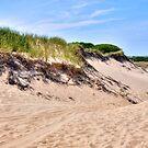 Dunes of Cape Cod, Provincetown!!! by Poete100