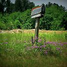 Rural Post Office© by walela