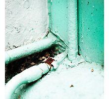 { Corners: where the walls meet #04 } Photographic Print