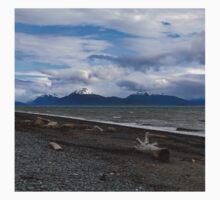 Bishop Beach - Homer, Alaska One Piece - Short Sleeve