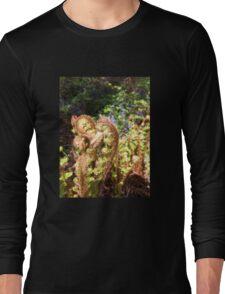 fairies down the garden  Long Sleeve T-Shirt