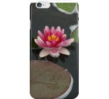 Water Lily Reflections iPhone Case/Skin