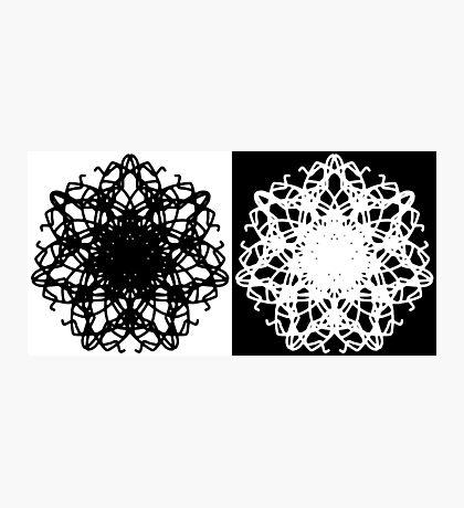 """ Duometrix "" Black & White. Vector Art Photographic Print"