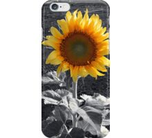 A SHOW OF TRUE COLOR iPhone Case/Skin