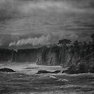 The Storm by Linda Cutche