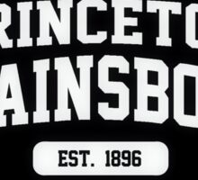 Princeton Plainsboro- House Sticker  Sticker