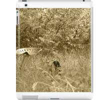 Antique Farm Equipment in a Field of Grass iPad Case/Skin