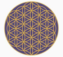 The Flower of Life by Kim  Lynch