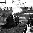 Steam train, Darling Station. by geof