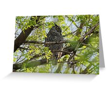 Great Horned Owl in the Trees Greeting Card