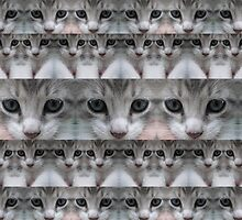 Gray Kitten Duvet by GolemAura