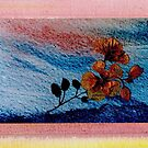 Pressed Flowers on Blue by Dana Roper