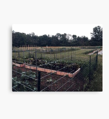 Community Gardens Canvas Print
