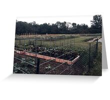 Community Gardens Greeting Card