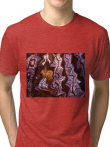 Stained Glass Wonderland Tri-blend T-Shirt
