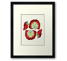 berri Framed Print