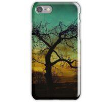 AUTUMN SCENE iPhone Case/Skin