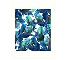 Rubber Plant #redbubble #lifestyle Art Print