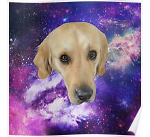 Dog In The Stars Poster