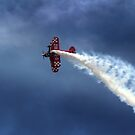 Pitts S2S  by larry flewers