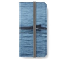 Humpback Mother and Baby iPhone Wallet/Case/Skin