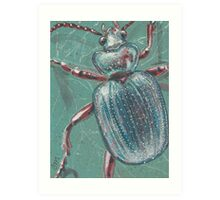 Shiny Beetle Art Print